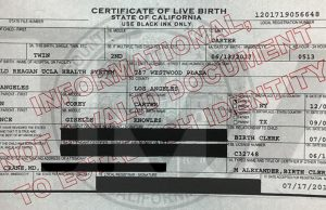 birth certificate beyonce