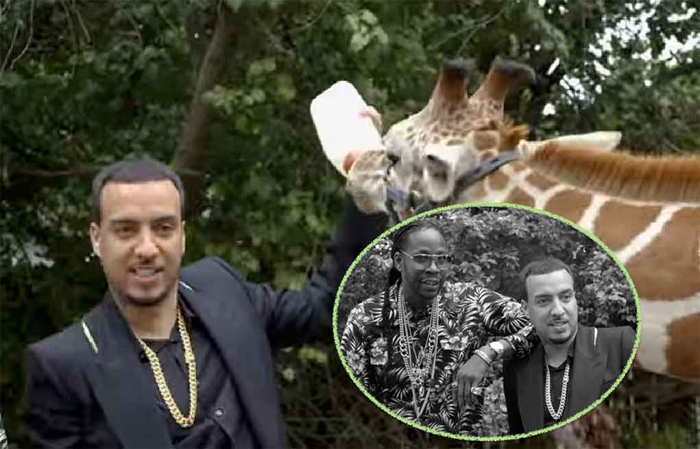French Montana Zoo
