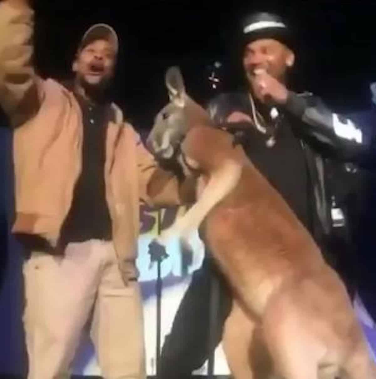 mike epps kangaroo feds